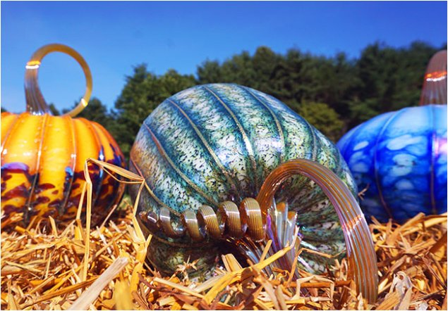 Colorful glass pumpkins lined up for sale and display upon hay bales