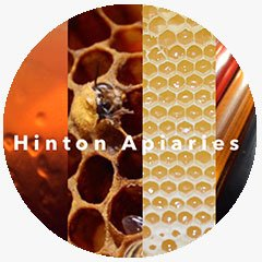 Honey bee and honey combs