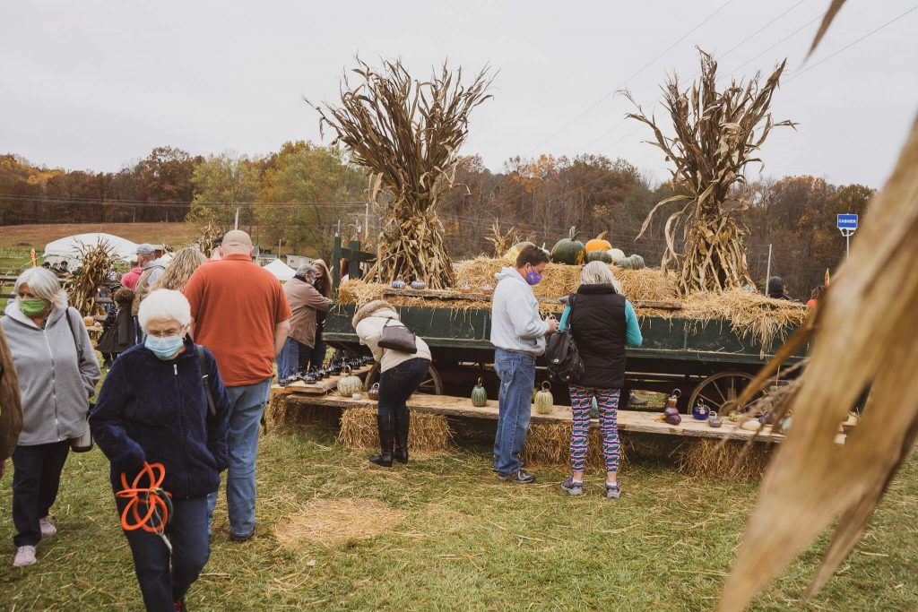 Festival attendees check out the various pumpkins on display next to vendor booths